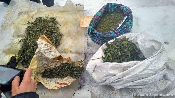 """В Харькове два брата """"хранили для себя"""" 8 килограмм марихуаны (ФОТО), фото-2"""