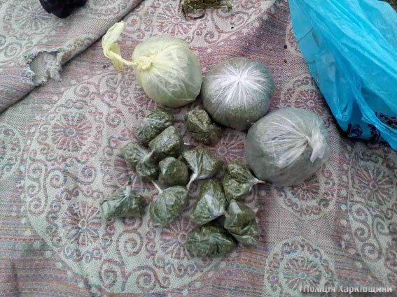 """В Харькове два брата """"хранили для себя"""" 8 килограмм марихуаны (ФОТО), фото-5"""