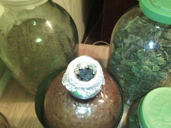За 2 кг марихуаны 27-летний сумчанин может лишиться имущества и сесть на 12 лет (ФОТО), фото-4