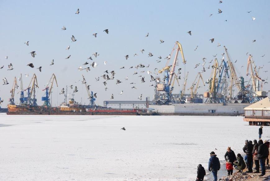 Азовское море покрылось льдом (ФОТОРЕПОРТАЖ), фото-3