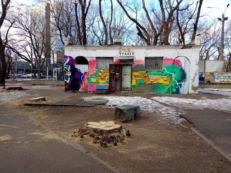 В одесском Старо-Базарном сквере спилили деревья (ФОТО), фото-1
