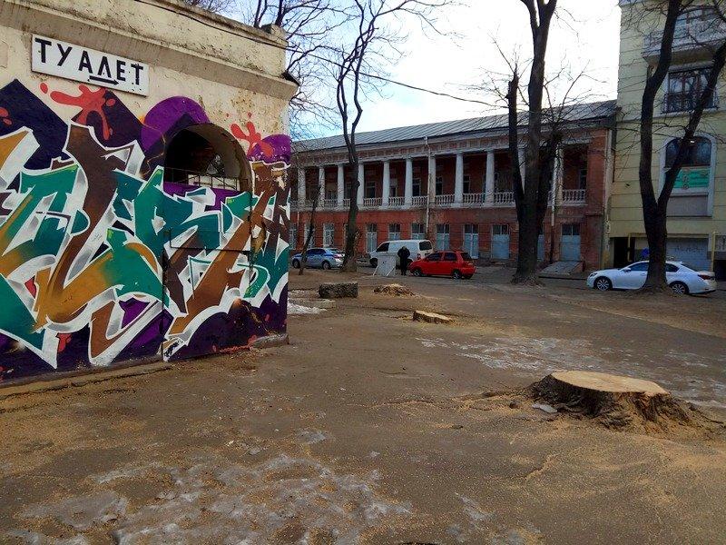 В одесском Старо-Базарном сквере спилили деревья (ФОТО), фото-7