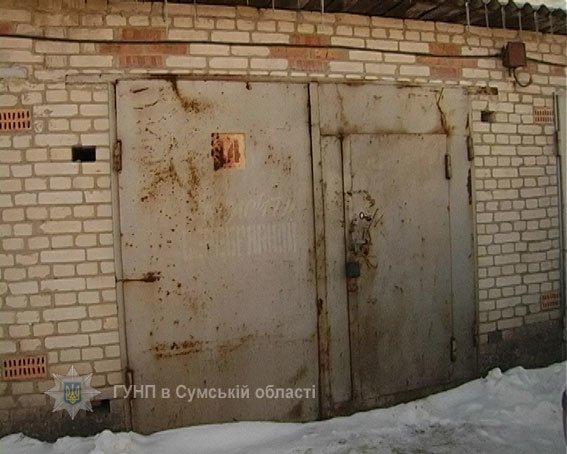 В Сумах обнаружили наркотеплицу (ФОТО), фото-2