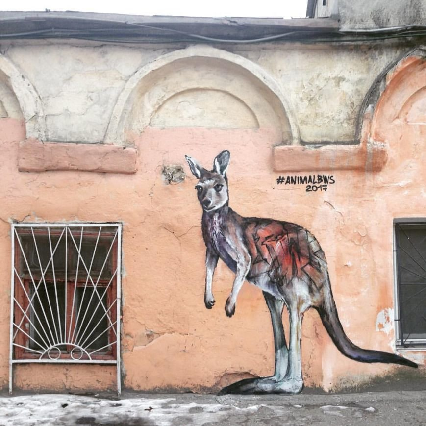 На улицах Одессы можно встретить кенгуру (ФОТО), фото-1