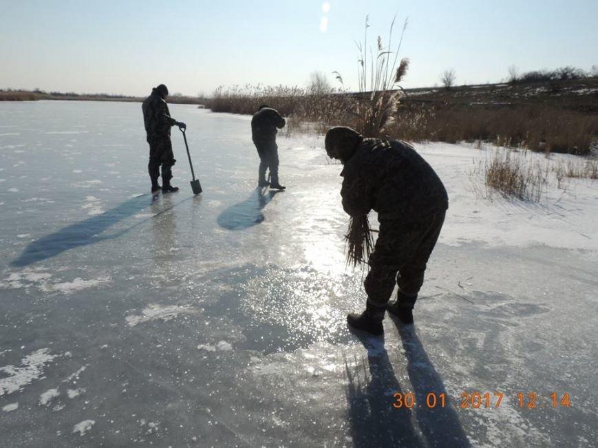 Обитателей водоемов Азовского бассейна спасали от верной смерти (фото), фото-2