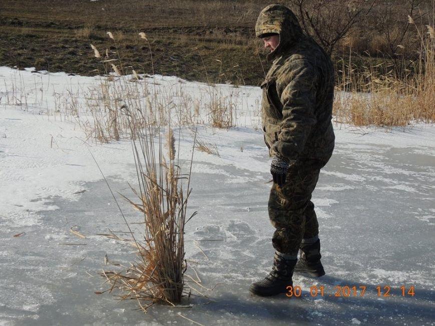 Обитателей водоемов Азовского бассейна спасали от верной смерти (фото), фото-4