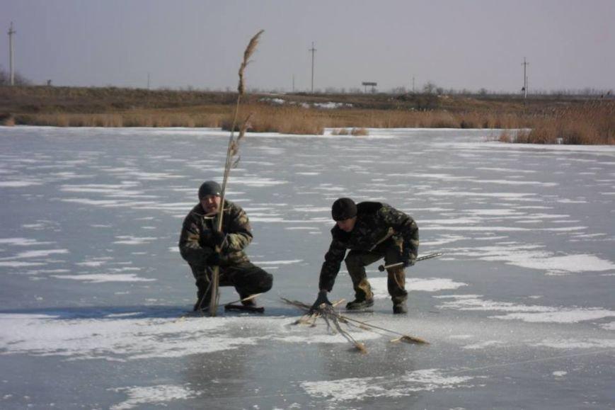Обитателей водоемов Азовского бассейна спасали от верной смерти (фото), фото-6