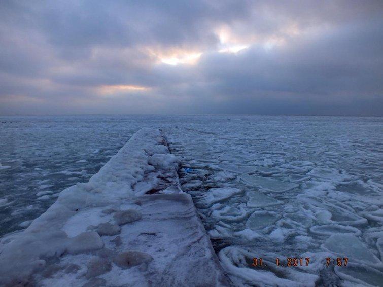 В замерзшем море одесситы нашли полыньи и купаются (ФОТО), фото-2