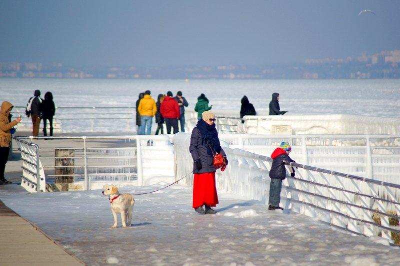 В Одессе вдоль Трассы здоровья растянулись километры льда (ВИДЕО, ФОТО), фото-1