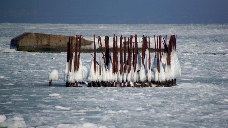 В Одессе вдоль Трассы здоровья растянулись километры льда (ВИДЕО, ФОТО), фото-35