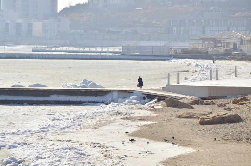 В Одессе вдоль Трассы здоровья растянулись километры льда (ВИДЕО, ФОТО), фото-38