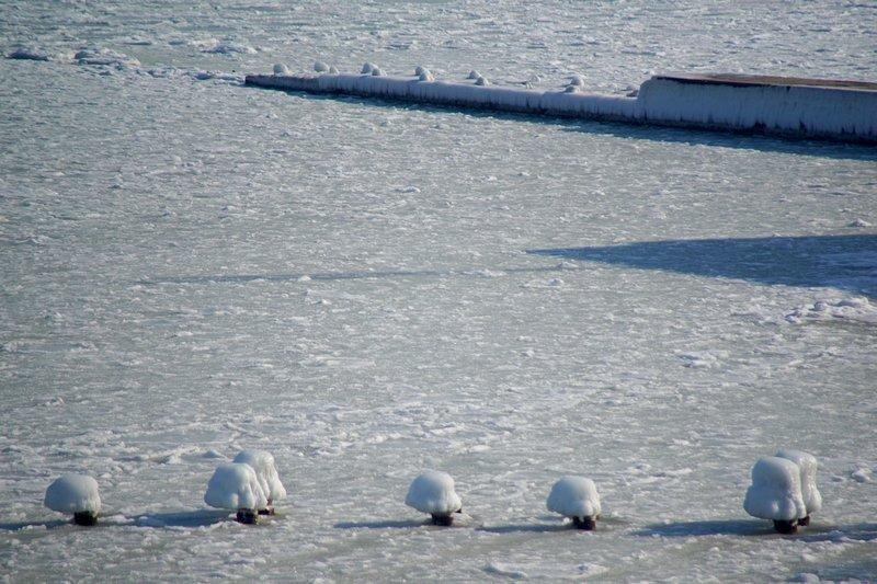 В Одессе вдоль Трассы здоровья растянулись километры льда (ВИДЕО, ФОТО), фото-18