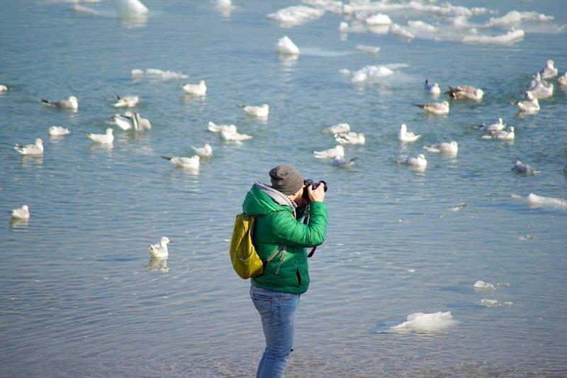 В Одессе вдоль Трассы здоровья растянулись километры льда (ВИДЕО, ФОТО), фото-9