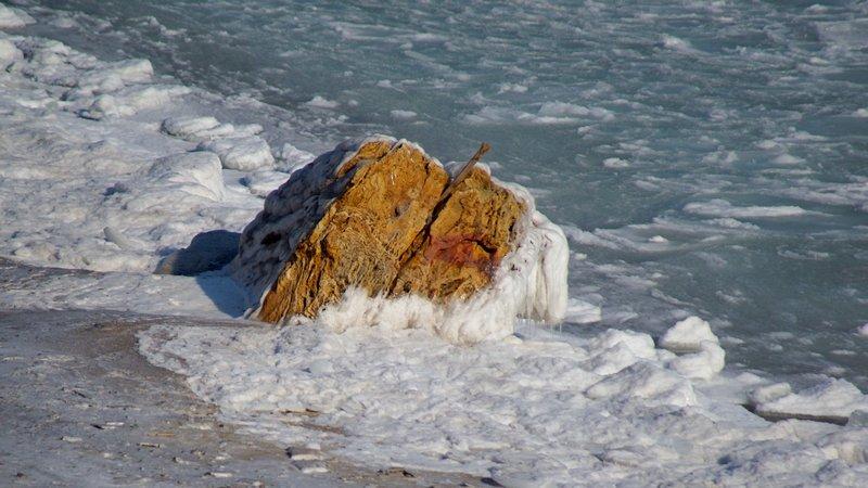 В Одессе вдоль Трассы здоровья растянулись километры льда (ВИДЕО, ФОТО), фото-36