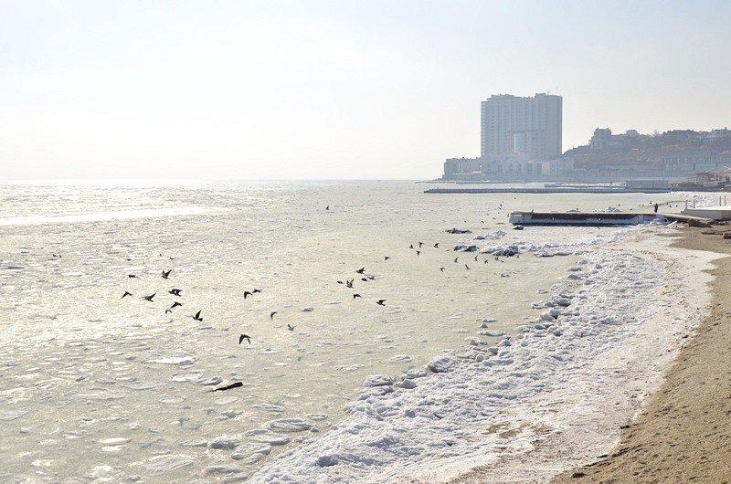 В Одессе вдоль Трассы здоровья растянулись километры льда (ВИДЕО, ФОТО), фото-39