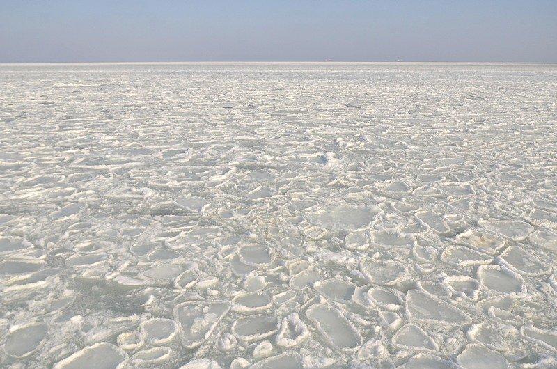 В Одессе вдоль Трассы здоровья растянулись километры льда (ВИДЕО, ФОТО), фото-4