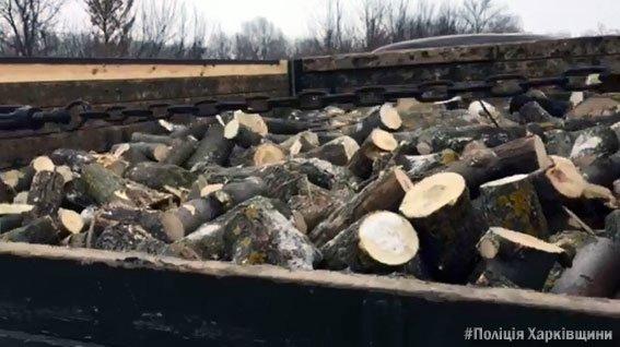 На Харьковщине полиция задержала авто, груженое нелегальной древесиной (ФОТО), фото-2