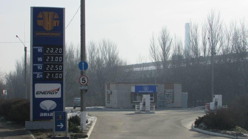 Цены на бензин огорчают мелитопольских водителей, фото-1