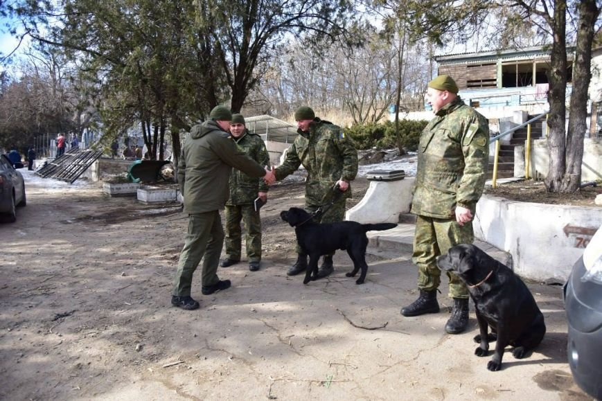 Вячеслав Аброськин навестил породистых копов (ФОТО), фото-4