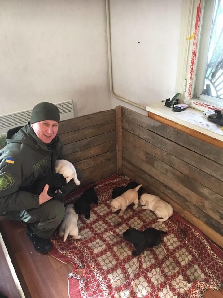 Вячеслав Аброськин навестил породистых копов (ФОТО), фото-3
