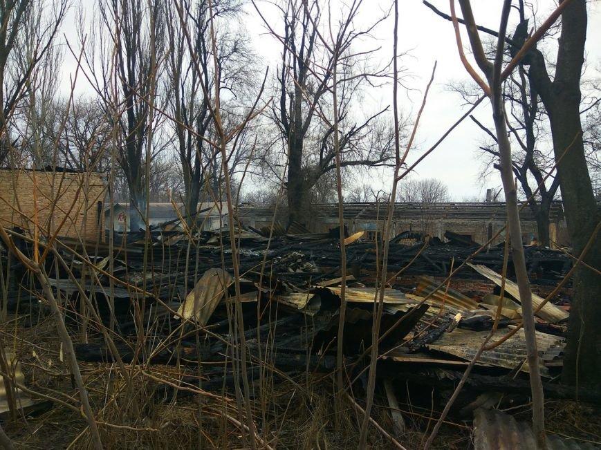 В Мариуполе сгорел лагерь бомжей (ФОТОРЕПОРТАЖ+ВИДЕО+ДОПОЛНЕНО), фото-14