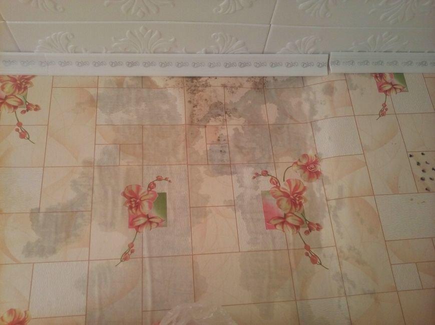 2. В затопленной квартире стена не просыхает уже две недели, по стене пошла плесень.