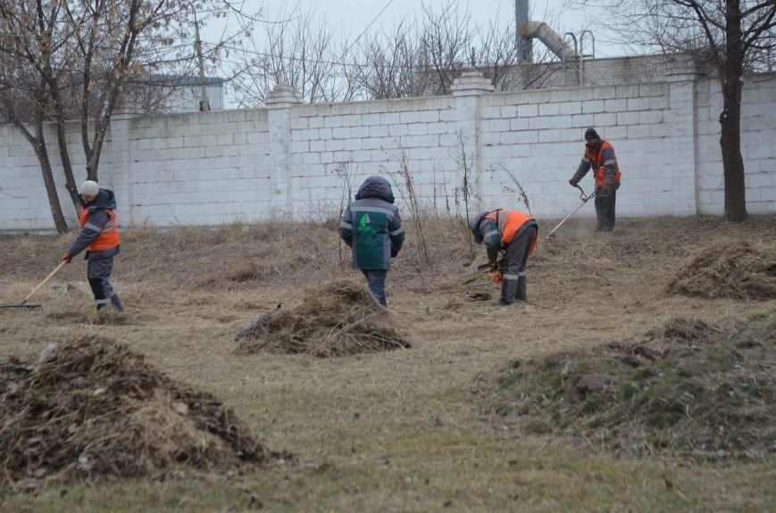В Мариуполе рассказали, как зимой косили траву  (ФОТО), фото-1