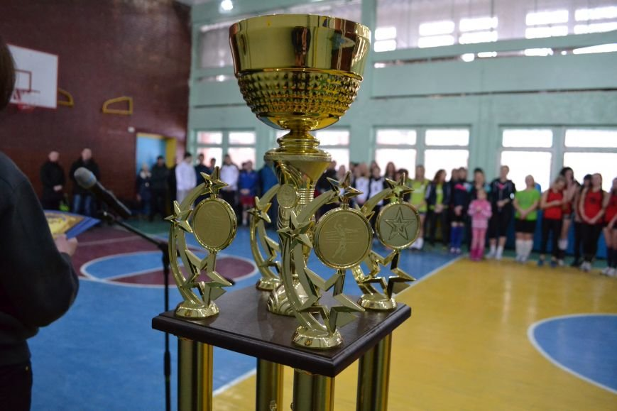 В Каменском открылся городской чемпионат по волейболу, фото-8