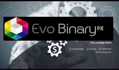 Осторожно: Золотая лихорадка финансовых пирамид в Украине: Evart Network и Evo Binary, фото-1