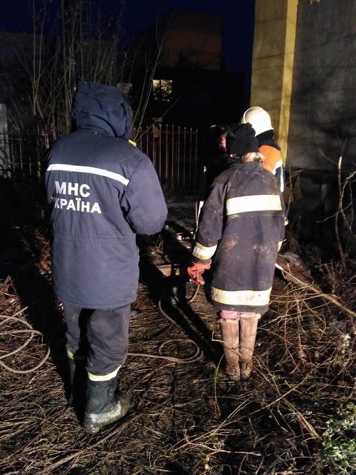 В Ужгороді рятувальники та зоозахисники провели операцію з порятунку собаки Боббі із шахти теплотраси: фото, відео, фото-2
