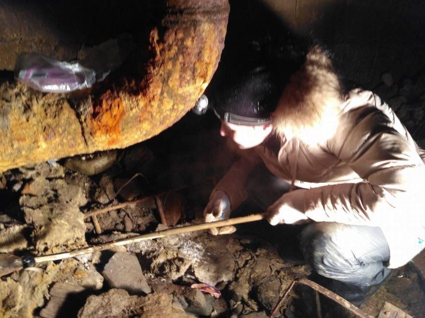 В Ужгороді рятувальники та зоозахисники провели операцію з порятунку собаки Боббі із шахти теплотраси: фото, відео, фото-5