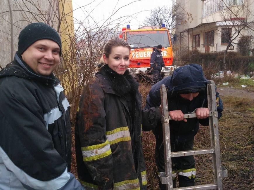 В Ужгороді рятувальники та зоозахисники провели операцію з порятунку собаки Боббі із шахти теплотраси: фото, відео, фото-4