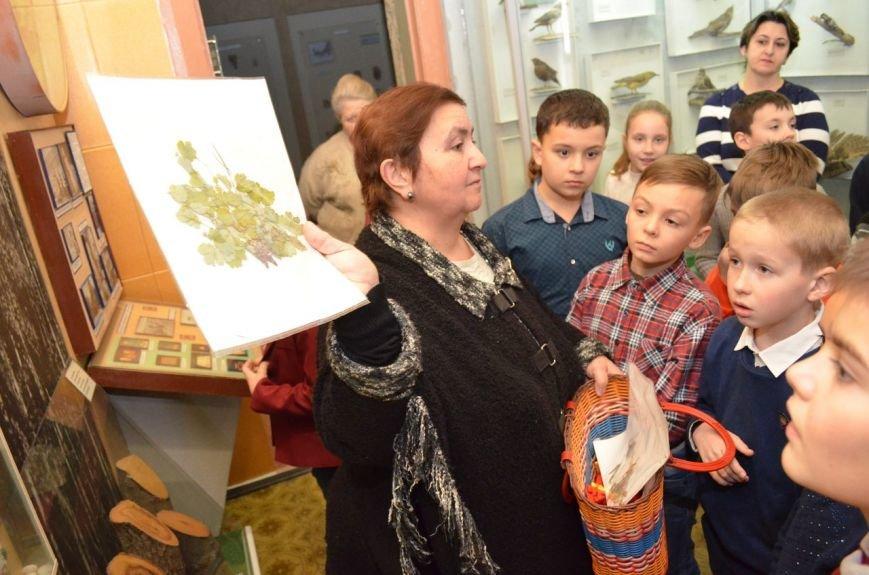 """Как мелитопольские школьники по музейным """"кочкам"""" гуляли, фото-3"""