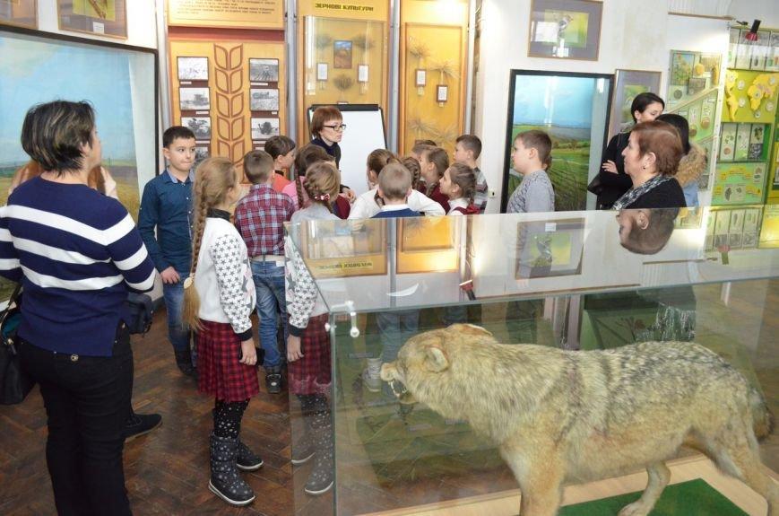 """Как мелитопольские школьники по музейным """"кочкам"""" гуляли, фото-5"""