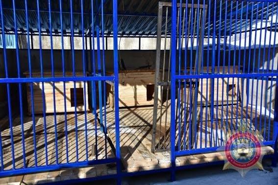 В Мариуполе служебные собаки полиции будут проходить «курс выживания» (ФОТО), фото-7