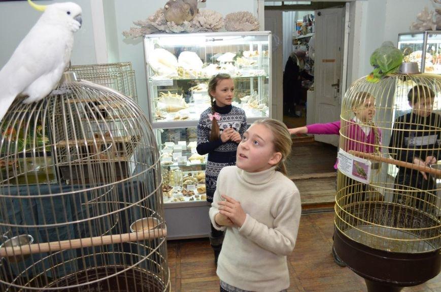 Школьники подружились с говорящими попугаями и неугомонными обезьянами (фото), фото-3