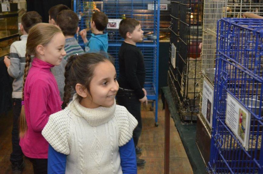 Школьники подружились с говорящими попугаями и неугомонными обезьянами (фото), фото-2