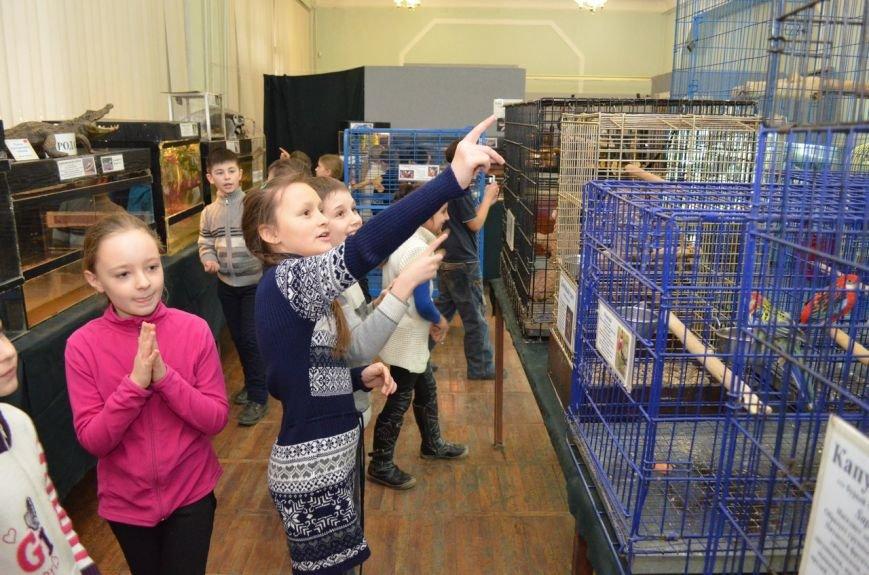 Школьники подружились с говорящими попугаями и неугомонными обезьянами (фото), фото-1