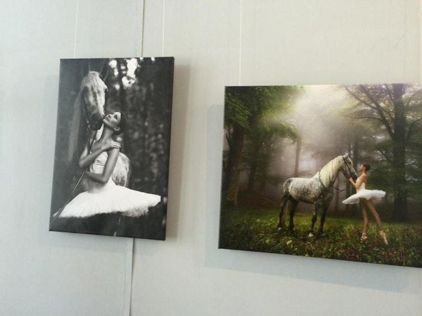 Балерины в выставочном центре покорили мариупольцев (ФОТО), фото-6