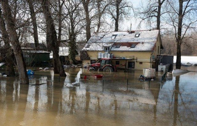 """Закарпатський льодохід добрався до Угорщини - дикі тварини """"гуляють"""" кригою: фото, відео, фото-10"""