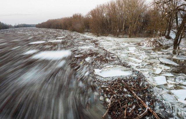 """Закарпатський льодохід добрався до Угорщини - дикі тварини """"гуляють"""" кригою: фото, відео, фото-12"""