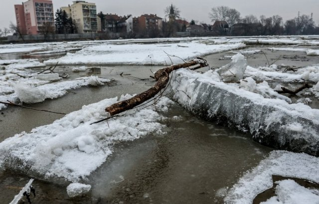 """Закарпатський льодохід добрався до Угорщини - дикі тварини """"гуляють"""" кригою: фото, відео, фото-11"""