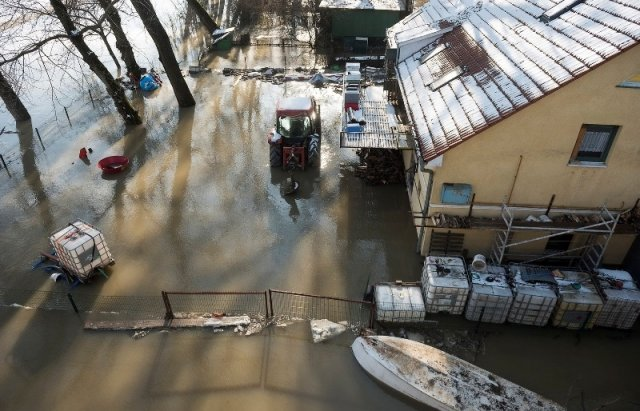 """Закарпатський льодохід добрався до Угорщини - дикі тварини """"гуляють"""" кригою: фото, відео, фото-9"""