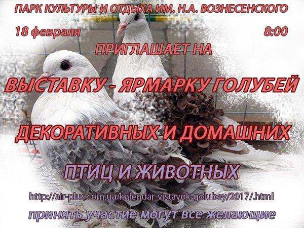 TVkmWUDUu7U