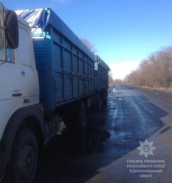 Павлоградські поліцейські затримали човіка, який незаконно перевозив 27 тон насіння соняшника, фото-1