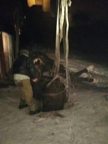 В Кривом Роге в канализационный колодец провалилась лошадь (ФОТО), фото-3