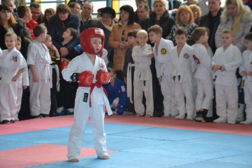 Сто сорок юных спортсменов померялись силами на турнире по джиу-джитсу (ФОТО), фото-3