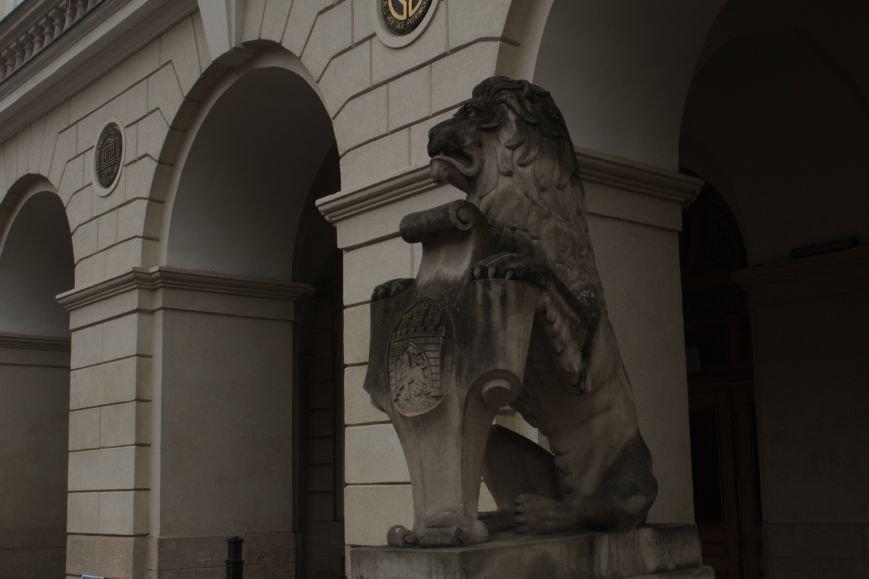 Леви в серці Львова: огляд найгарніших левів, які роблять наше місто особливим (ФОТОРЕПОРТАЖ), фото-4