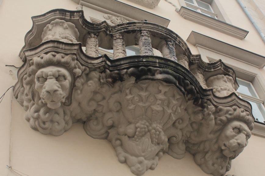 Леви в серці Львова: огляд найгарніших левів, які роблять наше місто особливим (ФОТОРЕПОРТАЖ), фото-10
