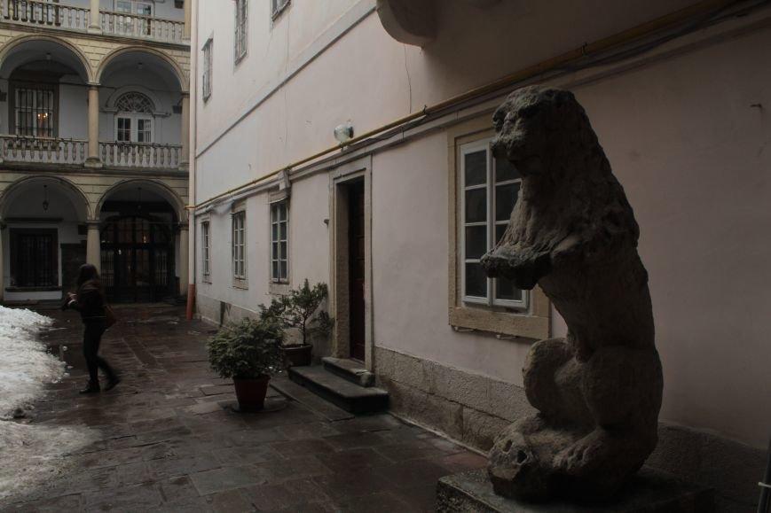 Леви в серці Львова: огляд найгарніших левів, які роблять наше місто особливим (ФОТОРЕПОРТАЖ), фото-7
